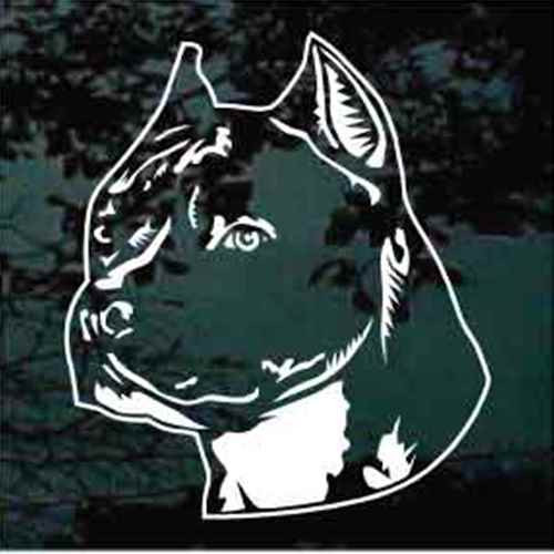 Detailed Amstaff Head Window Decals