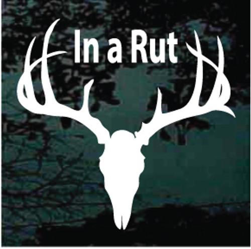 In A Rut Deer Skull