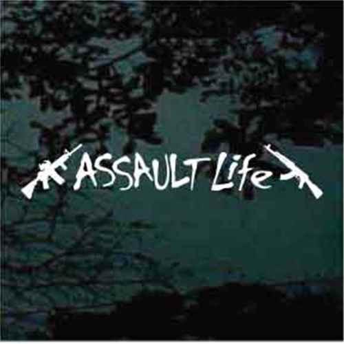 Assault Life With AR-15 & AK-47