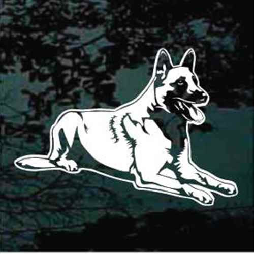 Belgian Malinois Down Window Decal