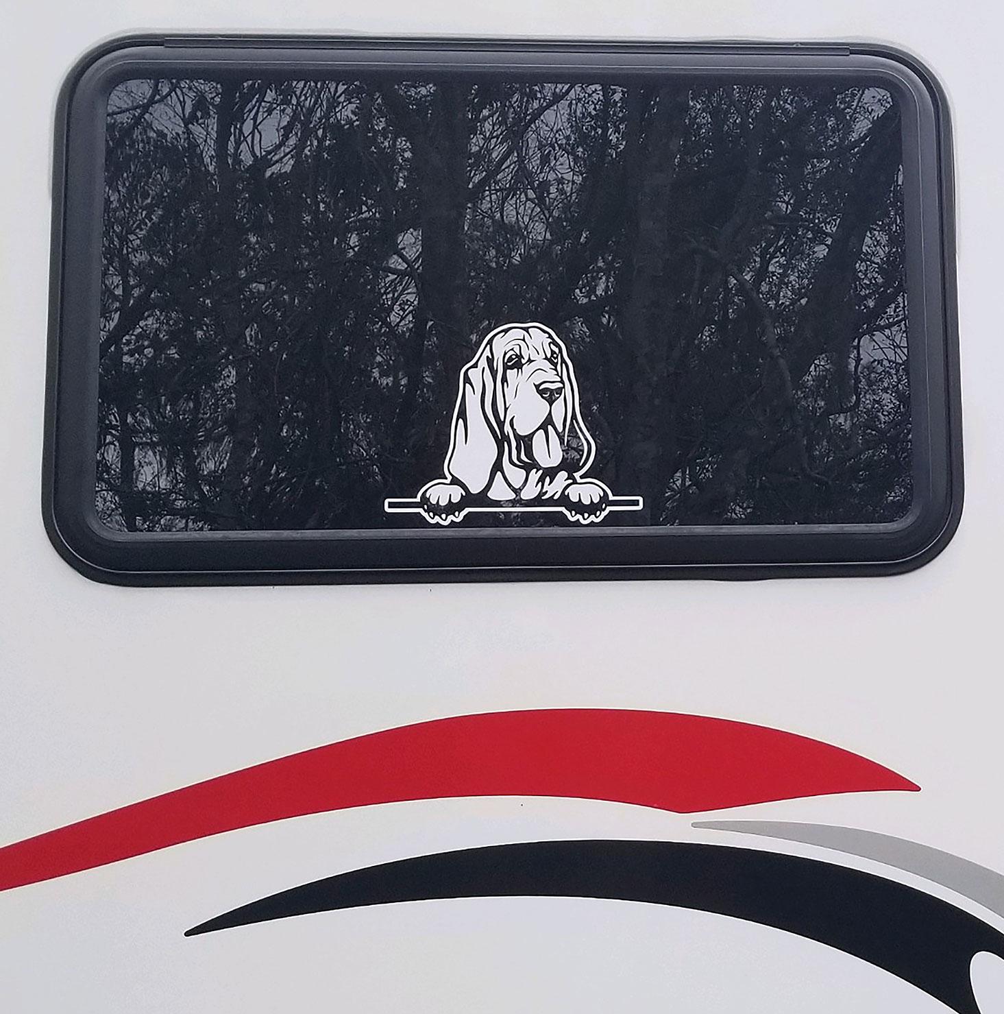 2bloodhound-peeking-in-the-window-rv-decals.jpg