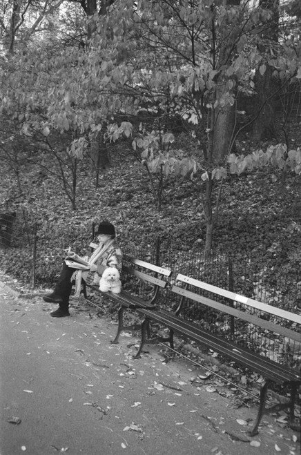 Quiet time in the park.