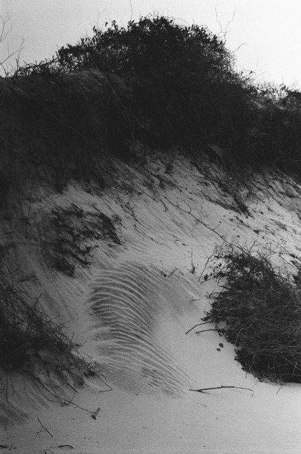 Strata  of sand tell a story.