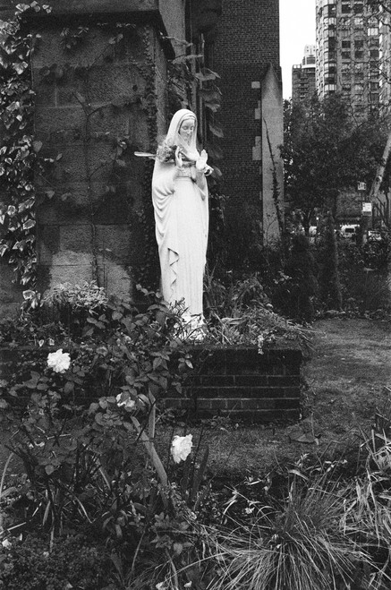 She could be known as Our Lady of Dead Flowers; however, her presence gives passers by a feeling of calmness and peace.
