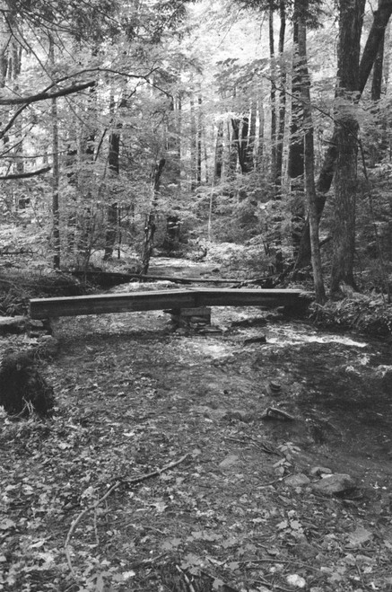 A small foot bridge further up the AT.
