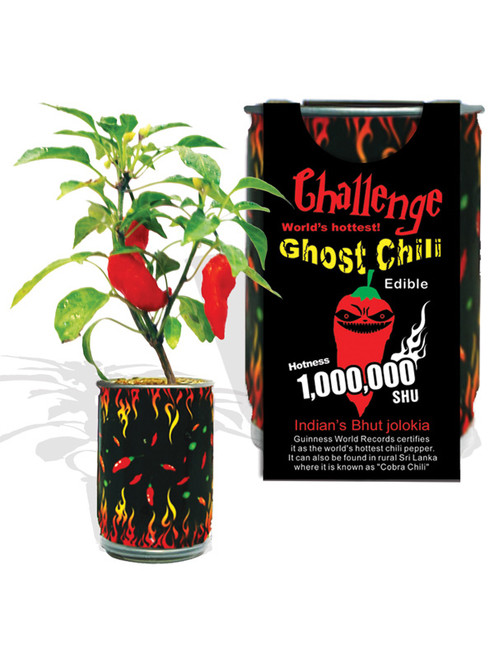 Challenge Ghost Chili Magic Plant - 1,000,000 SHU