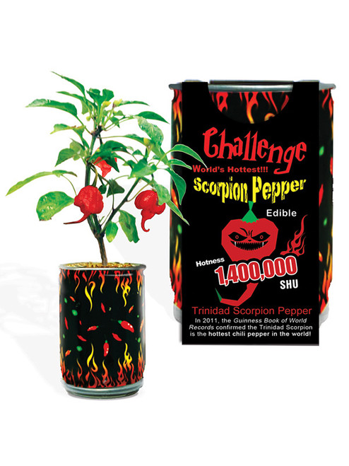 Challenge Scorpion Pepper Magic Plant - 1,400,000 SHU