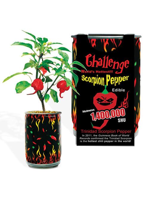 Magic Pepper Plants Gift Set, 3/Pepper Plants
