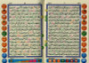 Digital Pen Reader with Tajweed Quran (persian-Urdu-Hindii Script) (Medium size14x19)