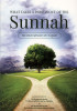 What Takes a Person Out of The Sunnah