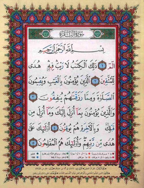 Tajweed Quran in 30 seperate Juzz Leather Case 17x24 Cm
