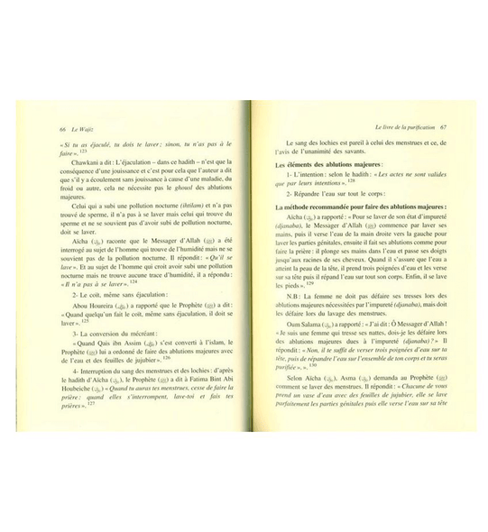 French :The summary of jurisprudence (Le Wajiz ou le Sommaire de la Jurisprudence)