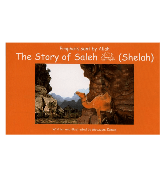 Story of Saleh