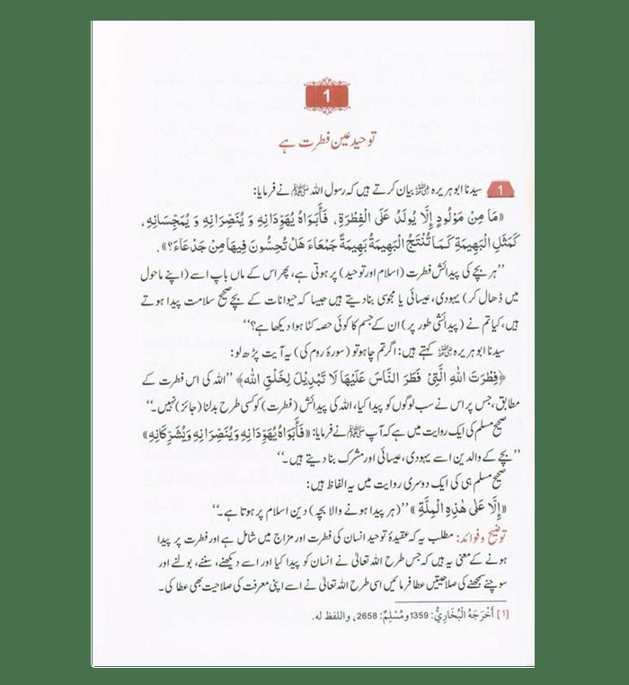 Attainment of the happiness (Sadaton ka Safar)in Urdu