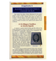 A Brief Illustrated Guide to Understanding Islam (Um Breve Guia Ilustrado Para Compreender o Islã)