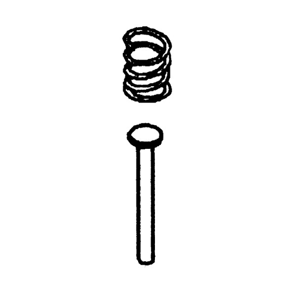 Valve pin and spring 175-3571