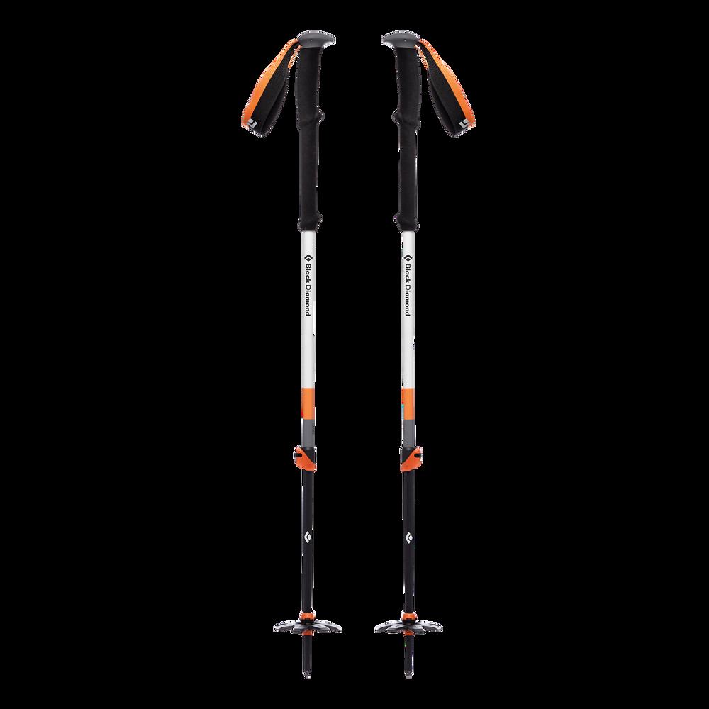 Expedition 2 Ski Poles