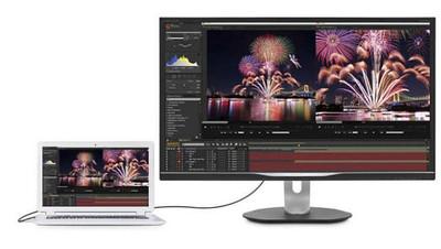 Philips 31.5 inch - 4K UHD HDMI DisplayPort USB-C docking
