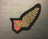 EAGLE AIRWAYS BREVET WINGS UNIFORM BADGE. GD 980