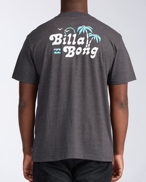 Billabong Tee Shirt - Tanzania - Black Heather