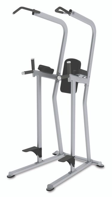 True Fitness Knee Raise / Dip / Chin Station