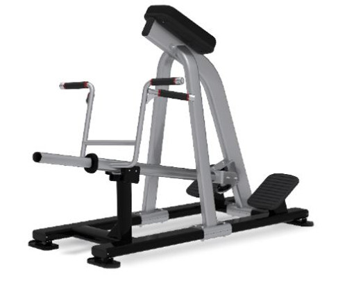 Incline Lever Row (Plate Loaded)