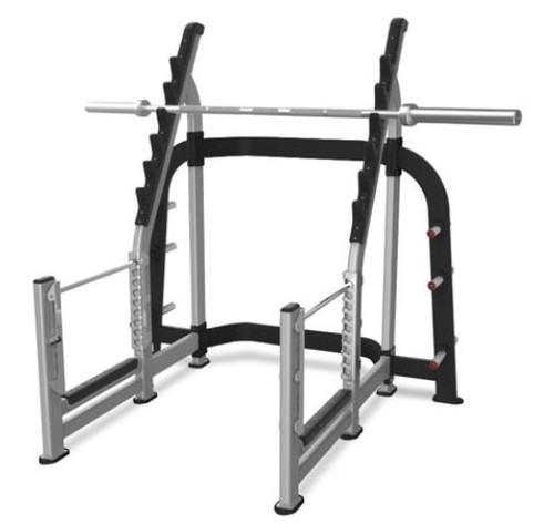 Nautilus Olympic Squat Rack