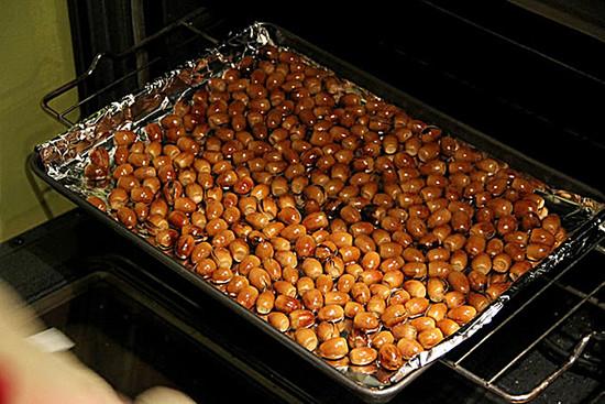 Canyon Live Oak roasted acorns