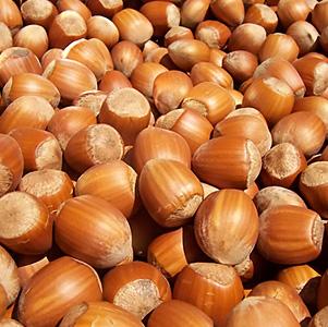 California Hazelnut thumbnail image