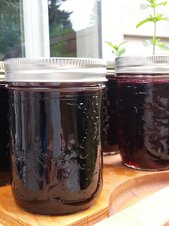 Pacific Blackberry jam