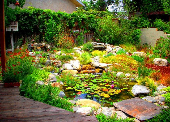beautiful garden ecosystem