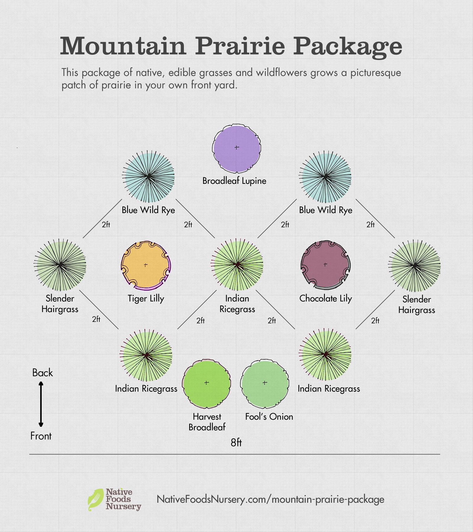 native-prairie-package-c.jpg