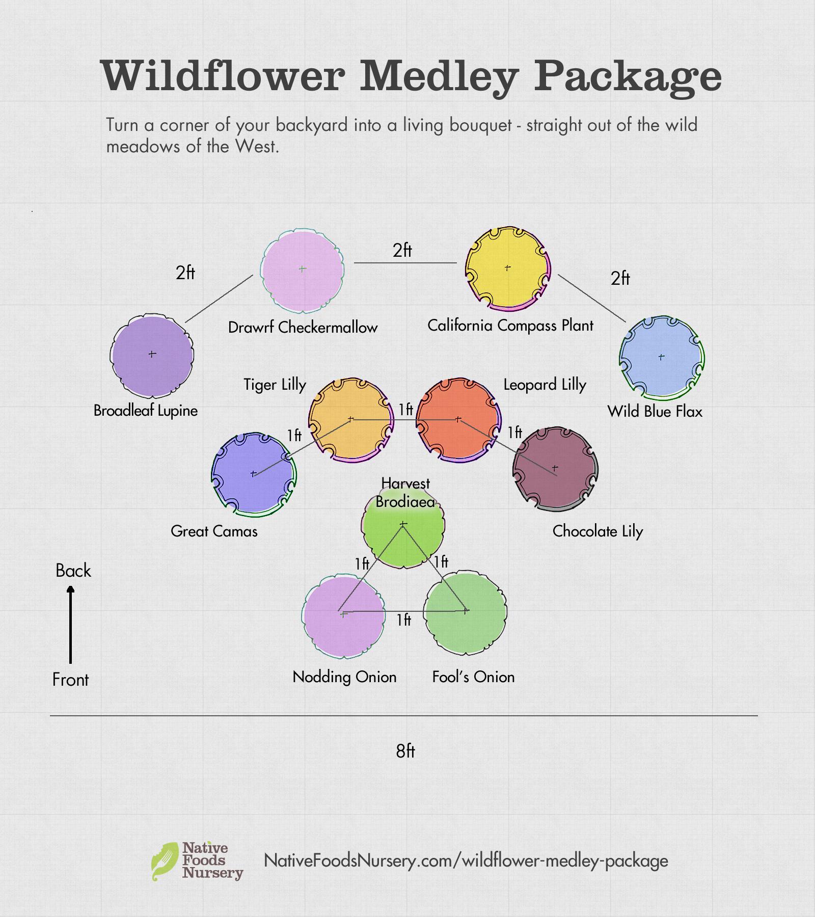 wildflower-medley-package.jpg