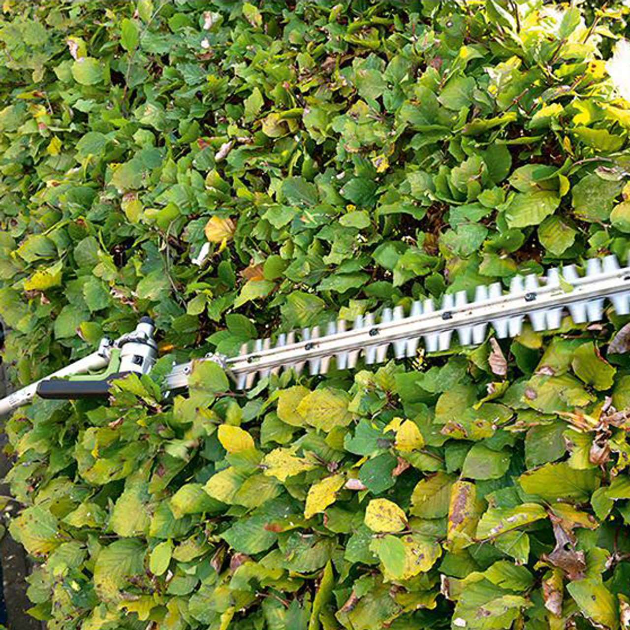 "EGO HTA2000 20"" Articulating Hedge Trimmer Attachment Image 5"