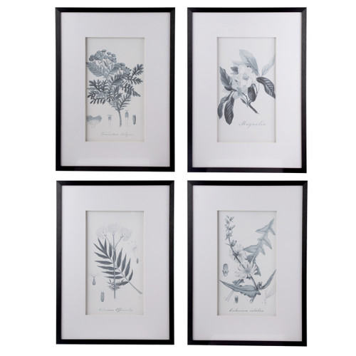 Set of four sketched botanical art in black and white made to look like graphite sketched botanical art. A wonderful addition to your home decor projects with these simple frames.