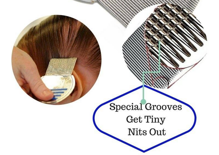 Terminator Nit-Removal Comb - by LTC®