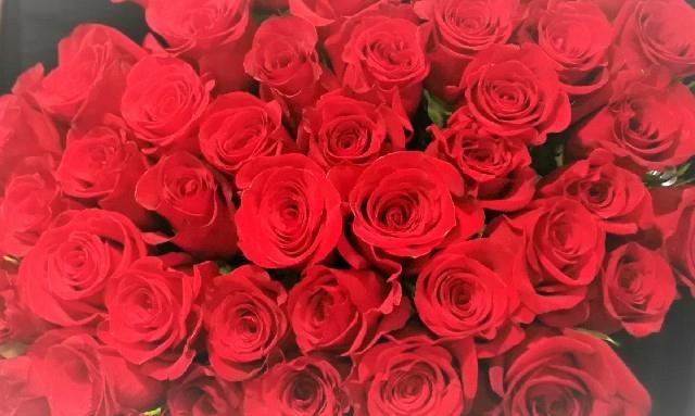 50-red-roses-2.jpg