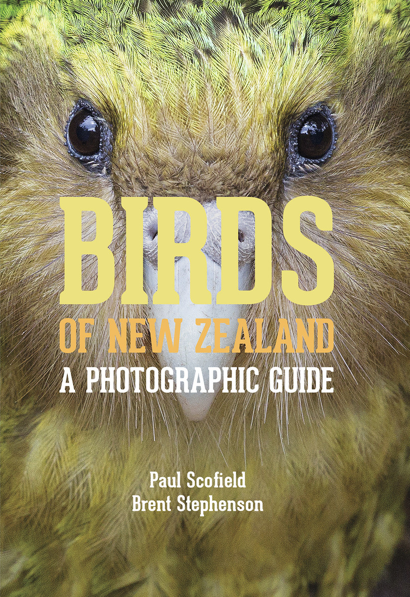 Birds of New Zealand: A Photographic Guide by Paul Scofield and Brent Stephenson