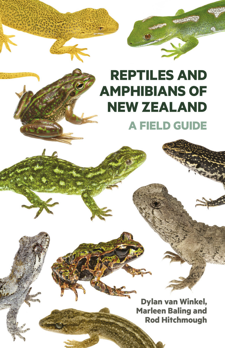 Reptiles and Amphibians of New Zealand: A Field Guide by Dylan van Winkel, Marleen Baling and Rod Hitchmough