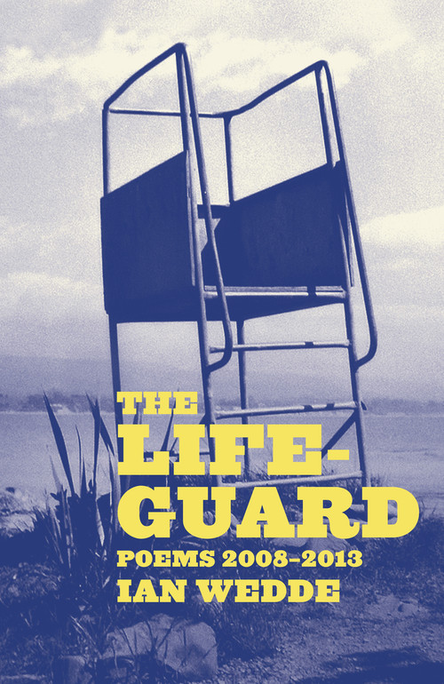The Lifeguard by Ian Wedde