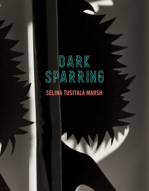 Dark Sparring cover art