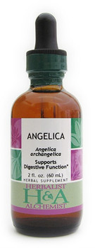 Angelica Liquid Extract by Herbalist & Alchemist