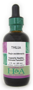 Thuja Liquid Extract by Herbalist & Alchemist
