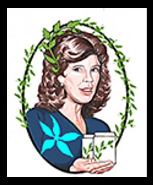 Compound Mullein Oil 2 oz. by Herbalist & Alchemist