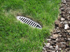 "3"" PVC Sch. 40 Mitered Drain w/Brown HDPE Grate"