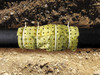 "Biobarrier Root Control Fabric 19.5"" x 21'"