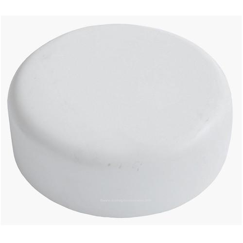 """10"""" PVC DWV Cap (S)"""