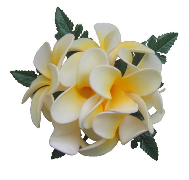Plumeria Kolohe Hula Clips (Pack of 6) - Yellow/White