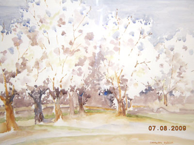 Almond Blossoms by Sharleen Robson