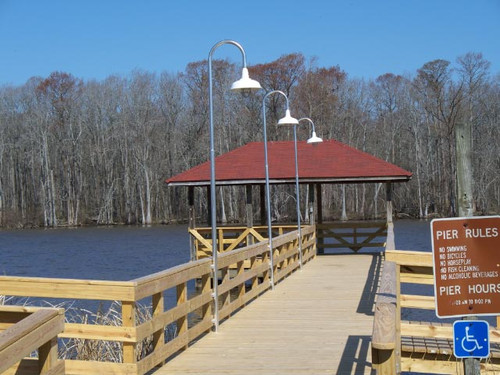 Aluminum Wharf Pole Dock Light w/Dome Shade-11 foot